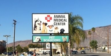 Animal Medical Center