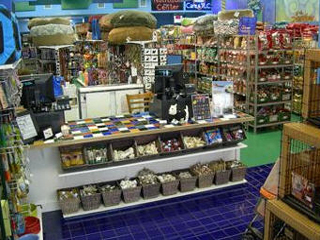 Doggy Store - Homestead Business Directory