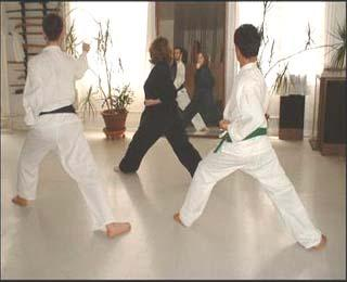 Nabi Su Martial Arts & Wellness Center