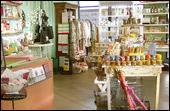 Coco & Toulouse Go Shopping - Homestead Business Directory