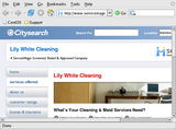 Lily White Cleaning Service LLC - Chatsworth, CA