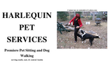Harlequin Pet Svc - Austin, TX