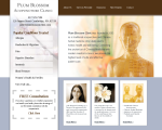 Plum Blossom Acupuncture Clinic - Cambridge, MA