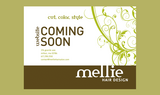 Mellie Hair Salon - Milton, MA