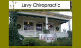 Levy Chiropractic - Portland, OR