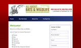 All About Bats and Wildlife - Norwalk, CT