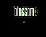Blossom Vegan Restaurant - New York, NY