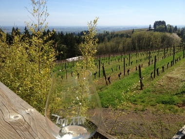 Torii Mor Winery - Dundee, OR