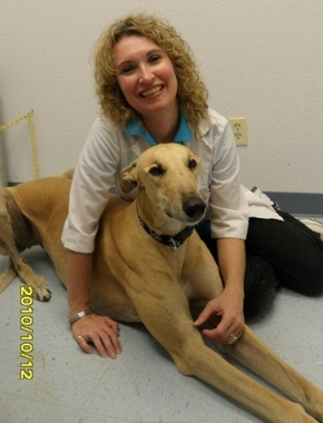 County Line Veterinary Clinic - New Braunfels, TX