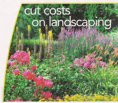 Green Planet Landscaping Inc - Hillsboro, OR
