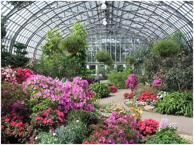 Garfield Park Conservatory All - Chicago, IL