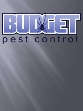 Budget Pest Control - Englewood, CO