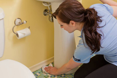 April Lane's Home Cleaning - Bellevue, WA