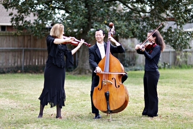 Pan String Trio LLC - Baton Rouge, LA
