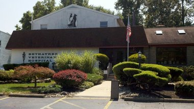 Bethayres Veterinary Hospital - Huntingdon Valley, PA
