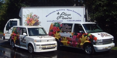 Plaza Flowers - Norristown, PA