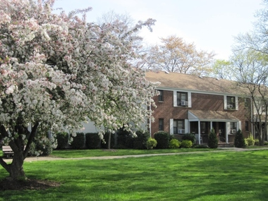 Brookchester Apartments - New Milford, NJ