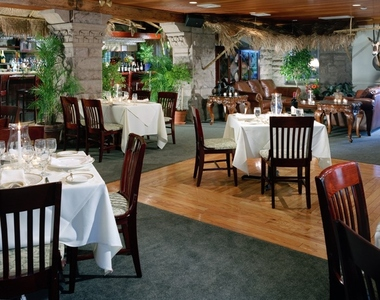 Safari Room - Newport, RI