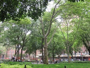 Washington Square Park - New York, NY