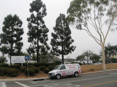 Easy auto registration in san diego ca 92103 citysearch for California department of motor vehicles san diego ca