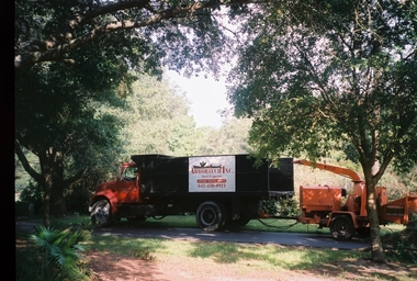 Total Tree Care Pawleys Island Sc