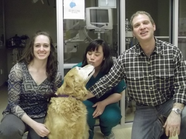Louisville Family Animal Hospital - Louisville, CO