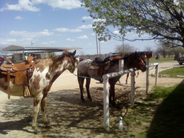 Benbrook Stables - Fort Worth, TX