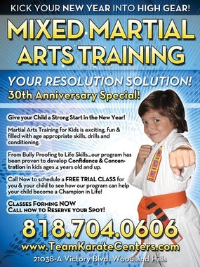 Team Karate Center - Woodland Hills, CA