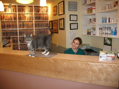 Riverside Veterinary - New York, NY