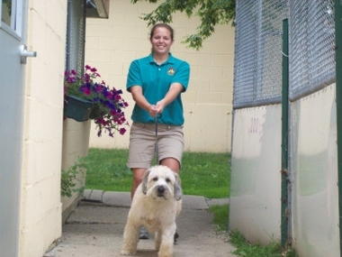 Best Friends Pet Care - Lincolnshire, IL
