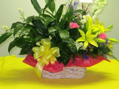 JOANNS FLOWERS AND GIFTS - Indian Trail, NC