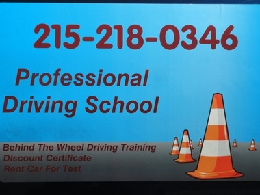 Professional Driving School