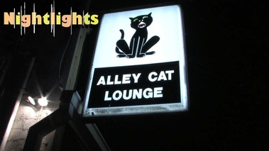 Alley Cat Lounge Inc - Indianapolis, IN