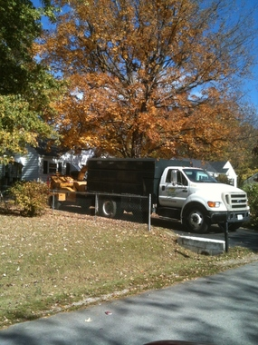 Ellis Tree Care Inc - Nashville, TN