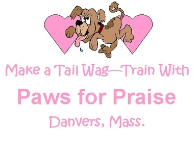 Paws For Praise - Danvers, MA