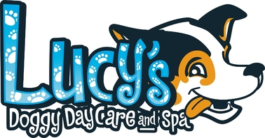 Lucy's Doggy Day Care and Spa - San Antonio, TX