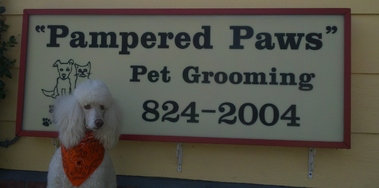 Pampered Paws - Manteca, CA