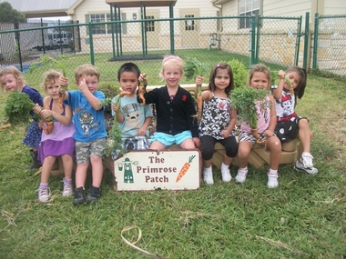 Primrose School of Round Rock - Round Rock, TX