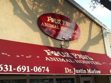 Phelps Veterinary Clinic - Amityville, NY