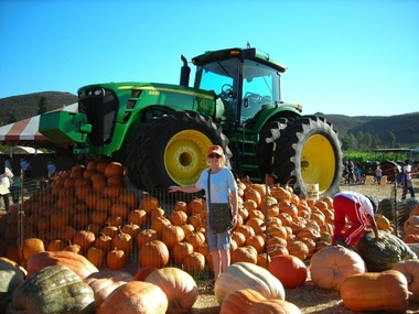 Underwood Family Farms - Moorpark, CA