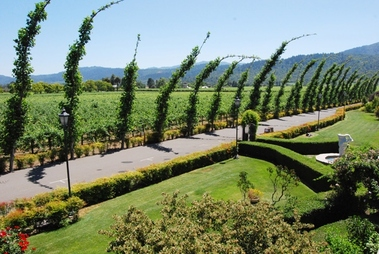 Peju Province Winery - Rutherford, CA
