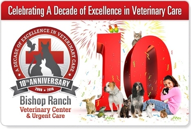 Bishop Ranch Veterinary - San Ramon, CA