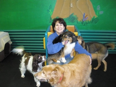 Doggone Fun Doggy Daycare Ctr - Tualatin, OR