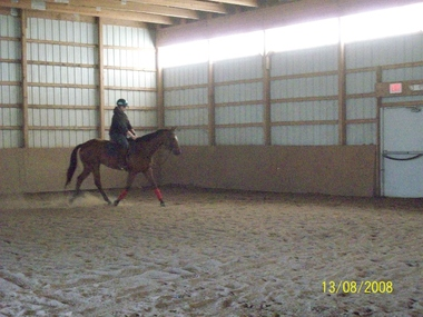 Rocking Horse Equestrian Ctr - Penfield, NY