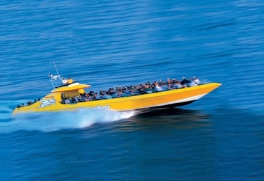 Seadog Speedboat & Architectural Cruises - Chicago, IL
