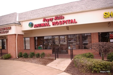 first capitol animal hospital in saint charles mo 63301 citysearch. Black Bedroom Furniture Sets. Home Design Ideas
