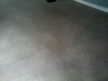 HutchPro Carpet Cleaning Plus, LLC - Indianapolis, IN