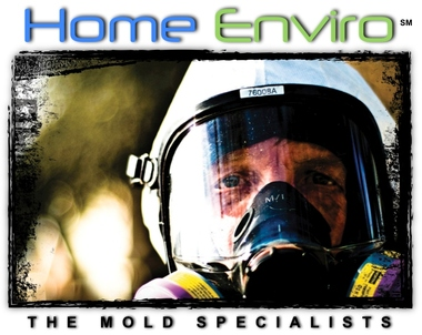 Home Enviro - Mold Inspection & Mold Remediation Services - Deerfield Beach, FL