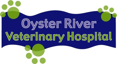 Oyster River Veterinary Hospital - Lee, NH