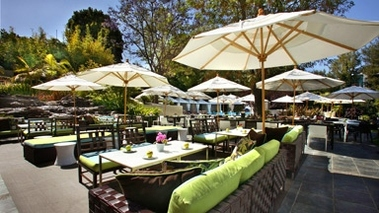 the backyard at the w hotel in los angeles ca citysearch